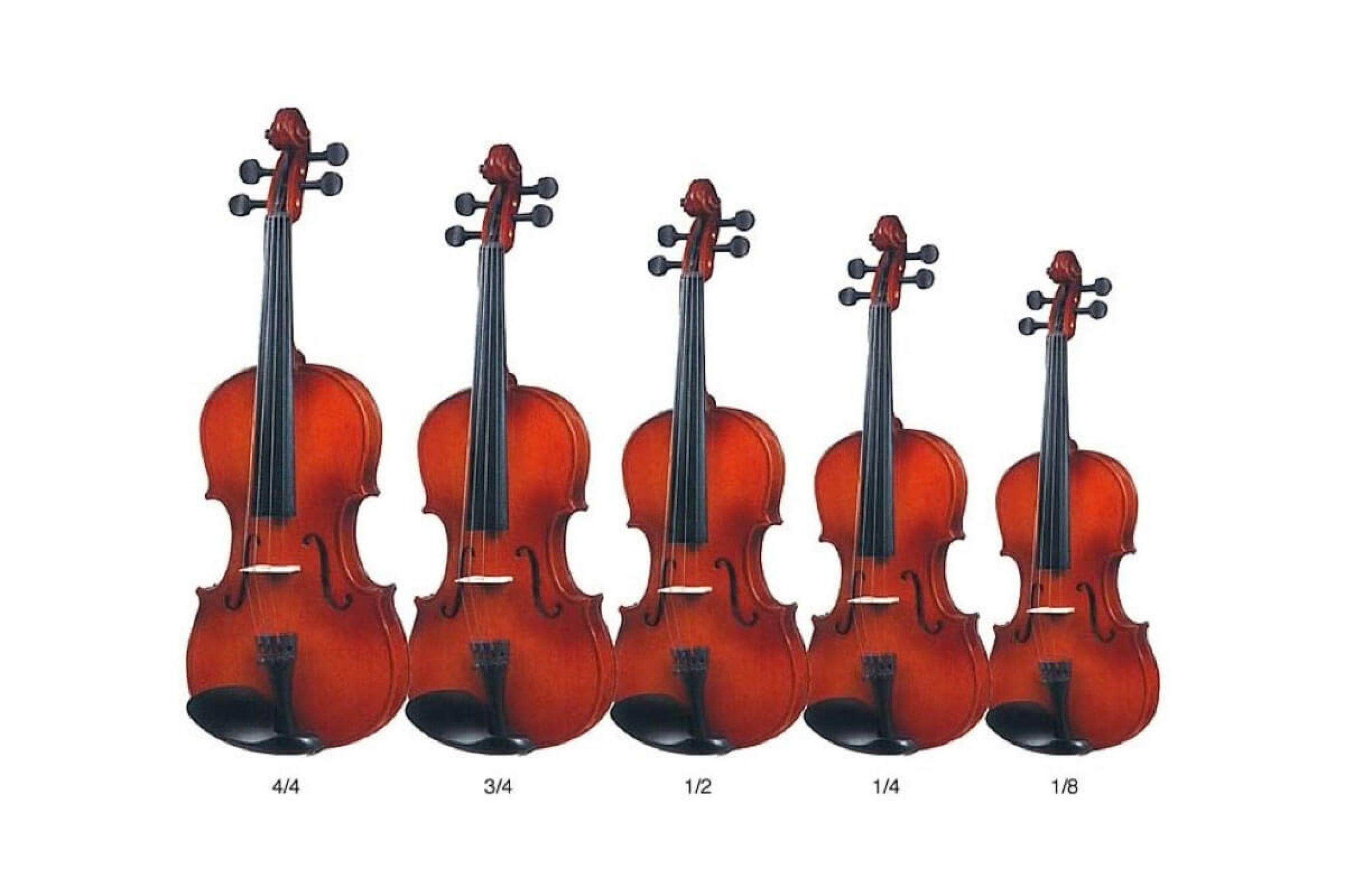 Violini Prezzi Migliori da studio