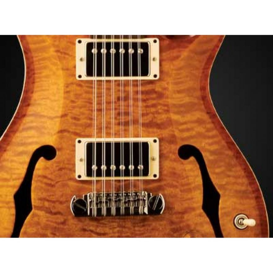 PRS HOLLOWBODY II Birds P VintageBurst