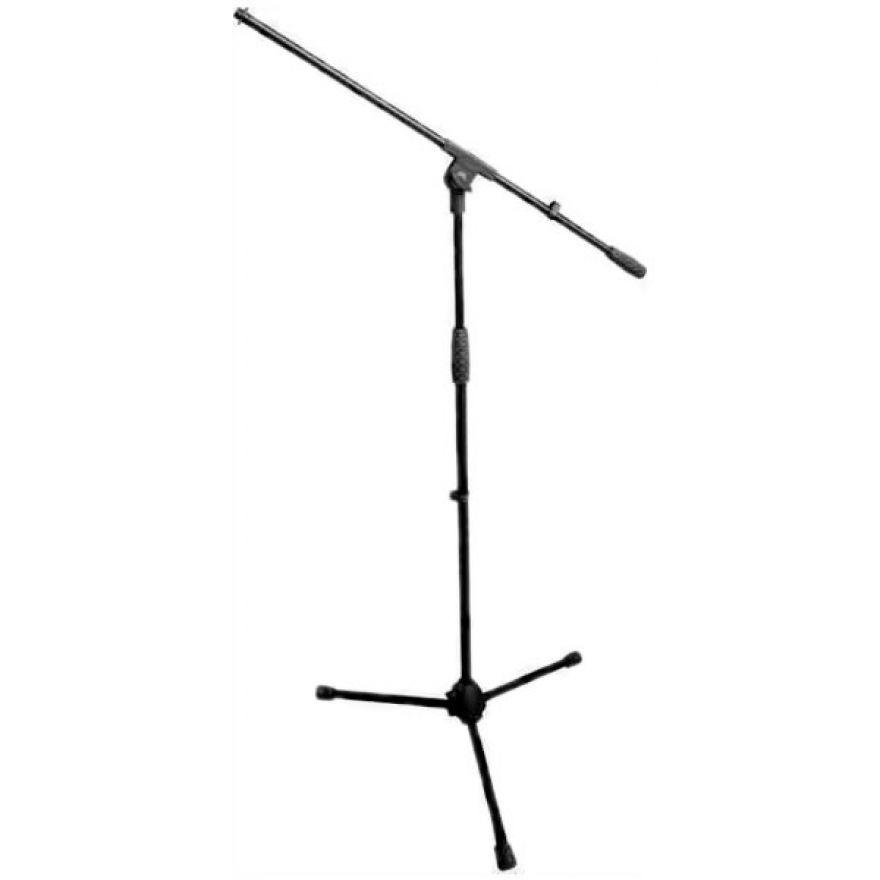 0-AM7 - Asta Microfonica