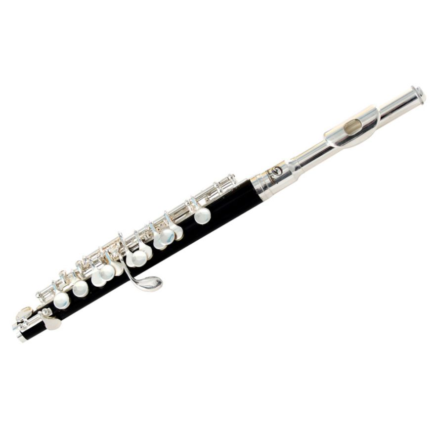 0-SOUNDSATION SFP-10 Silver