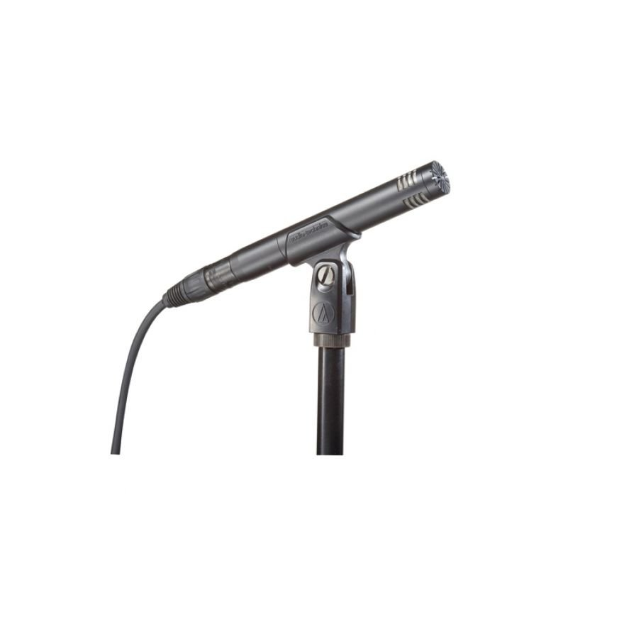 Audio Technica AT2031 - Microfono per Strumenti01