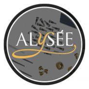 Alysee Set 10 Viti in Plastica Ricambi per Clarinetto in Sib