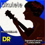 Dr UFSC corde per ukulele
