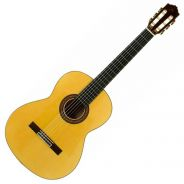 Jose Torres JTF-50 - Chitarra Flamenca