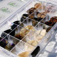 Timbertones TTNEW2012 - Box Plettri Assortito Collezione 2012