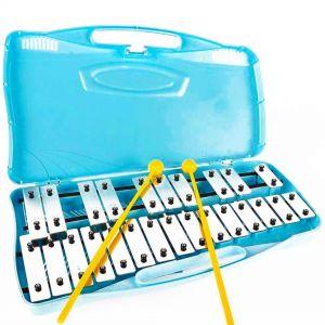 Carte spartiti Glockenspiel 25 Note G-G Tuned Xilofono cromatico Strumento musicale educativo Percussione
