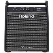 Roland PM 200 - Monitor per V-Drums 180W
