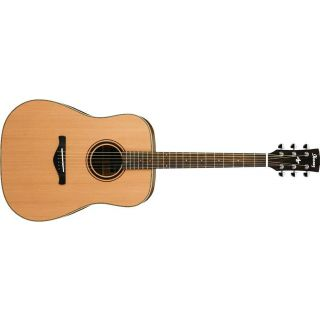 0-Ibanez AW250-LG - natural
