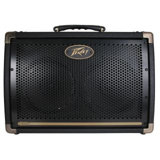 0-PEAVEY ECOUSTIC E208 - AM