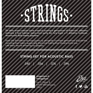 1 Eko - Acoustic Bass Strings 40-96 set