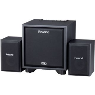 1-ROLAND CM110 CUBE Monitor