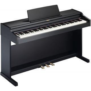 1-ROLAND RP301R-SB - PIANOF