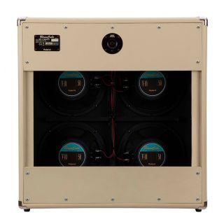1-ROLAND Blues Cube Cabinet