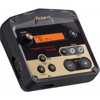 1-ROLAND TM2 - Modulo Trigg
