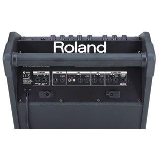 1-ROLAND PM10 - MONITOR 30W