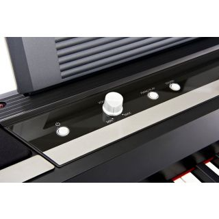 2-KORG SP-170DX PIANO STAGE