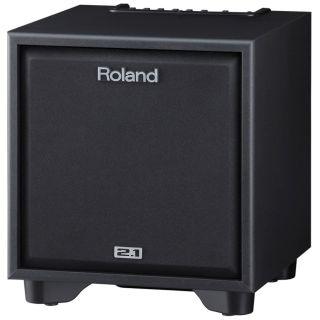 2-ROLAND CM110 CUBE Monitor