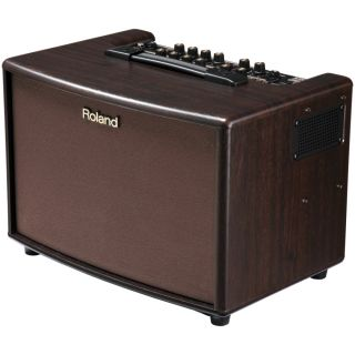2-ROLAND AC60 RW - AMPLIFIC