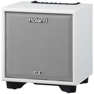 2-ROLAND CM110WH CUBE Monit