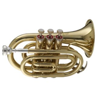 2-STAGG 77-MT - MINI TROMBA