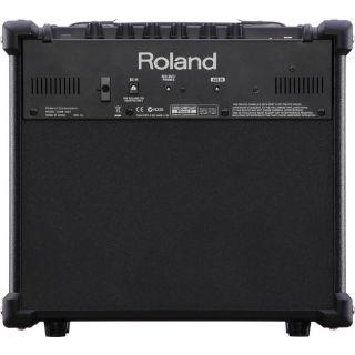 2-ROLAND CUBE 10GX - AMPLIF