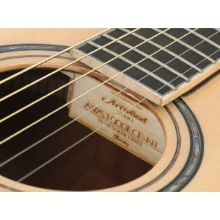 2-IBANEZ AWS1000ECE NT - CH