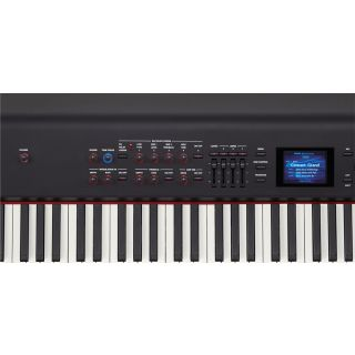 2-ROLAND RD800 - PIANO A 88
