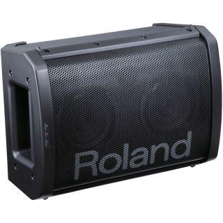 2-ROLAND BA55 - AMPLIFICATO