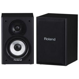 3-ROLAND CM110 CUBE Monitor