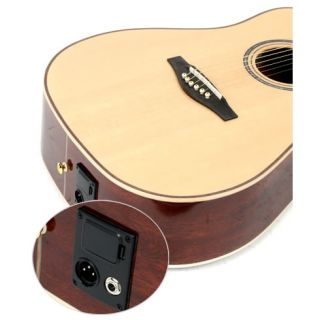 3-IBANEZ AWS1000ECE NT - CH