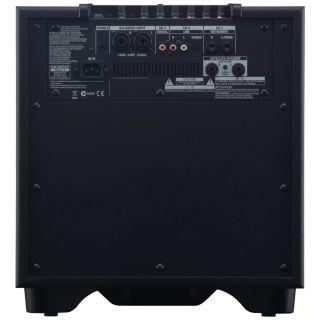 5-ROLAND CM220 CUBE Monitor