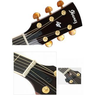 5-IBANEZ AWS1000ECE NT - CH