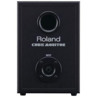 6-ROLAND CM110 CUBE Monitor