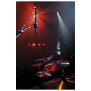 Dap CM-45 Microfono per strumenti foto 1