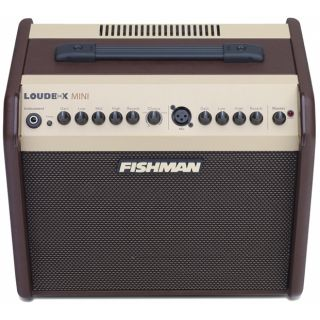 Fishman loudbox mini top
