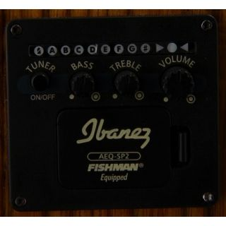 Ibanez aew21vk nt preamp