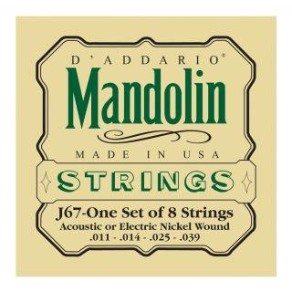 D'ADDARIO J67 - Muta per Mandolino Acustico / Elettrico (011/039)