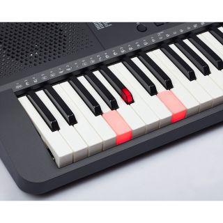 """3 MEDELI M221L - Tastiera Entry Level A 61 Tasti """"Touch Response"""" Con Sistema LED Di Illuminazione In Ogni Tasto Per L'apprendimento."""