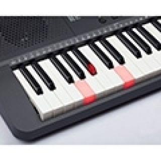 """7 MEDELI M221L - Tastiera Entry Level A 61 Tasti """"Touch Response"""" Con Sistema LED Di Illuminazione In Ogni Tasto Per L'apprendimento."""