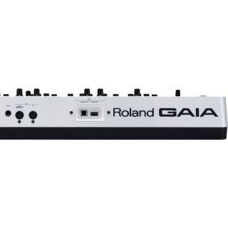 Roland SH-01 Gaia - Sintetizzatore 37 Tasti05