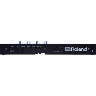 Roland a01k rear