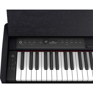Roland F701 Nero 06