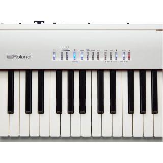 Roland fp30wh part