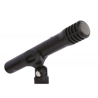 TASCAM TM-60 - Microfono a Condensatore per Recording