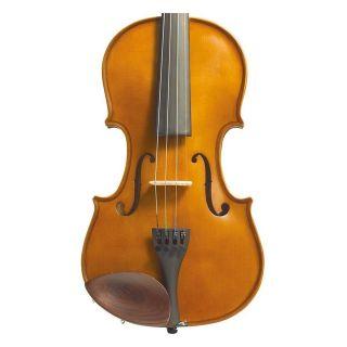 Fronte Violino 3/4 con Astuccio