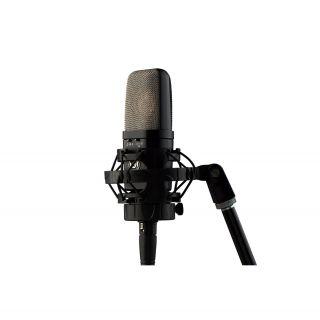 WARM AUDIO WA-14 - Microfono da Studio a Diaframma Largo_01