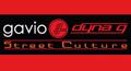 logo_gavio.jpg