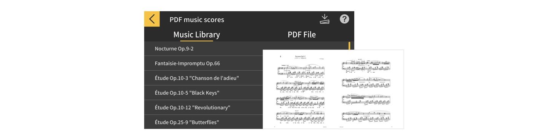 PDF SCREEN 1